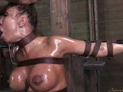tied, oiled double-barrelled close by brashness fucked