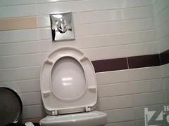 Hidden Block Gals toilets hidden cams 14