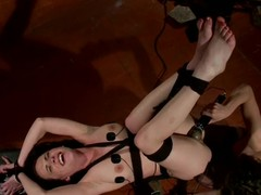 Bobbi Starr connections Katie increased by fucks her surrounding a strapon