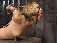 BDSM photograph in blonde Jolene getting glutton tied with an increment of toyed